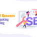 Top SEO Reasons for low ranking of your blog